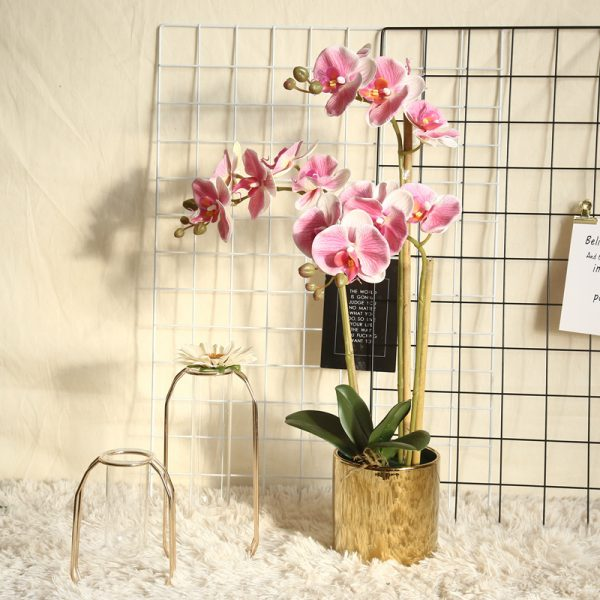 Artificial Flower Phalaenopsis Orchid 5 Heads 2